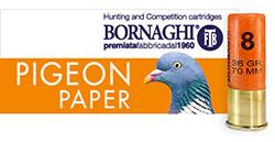 Pigeon-Paper