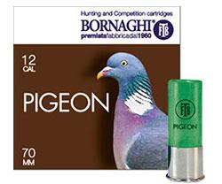 pigeon36