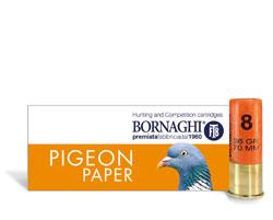 pigeonPaper