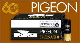 news Pigeon